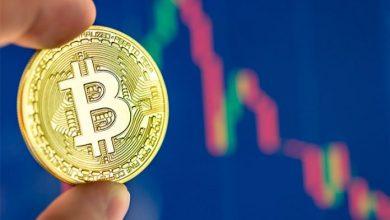 bitcoin price content 696x436 390x220 - عوامل موثر در افزایش قیمت بیتکوین