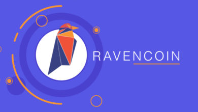 what-is-ravencoin