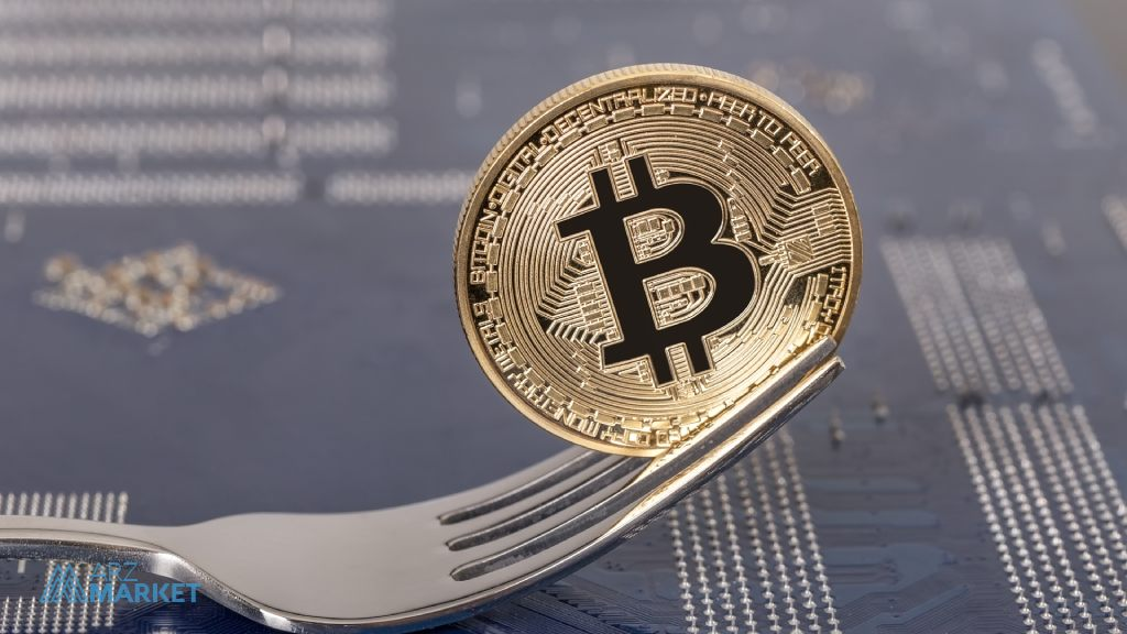 Cryptocurrency-Forks