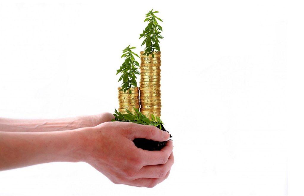 سرمایه گذاری رشد