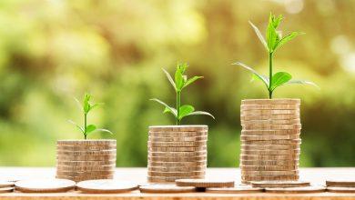 تصویر از سرمایهگذاری رشد (Growth Investing) چیست؟