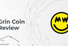 what-is-Grin-Coin