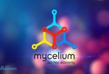 mycelium-wallet