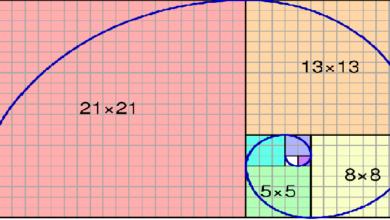 تصویر از تحلیل فیبوناچی چیست؟ آشنایی و معرفی نسبت های فیبوناچی