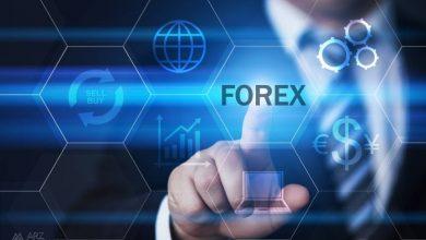 forex-concept
